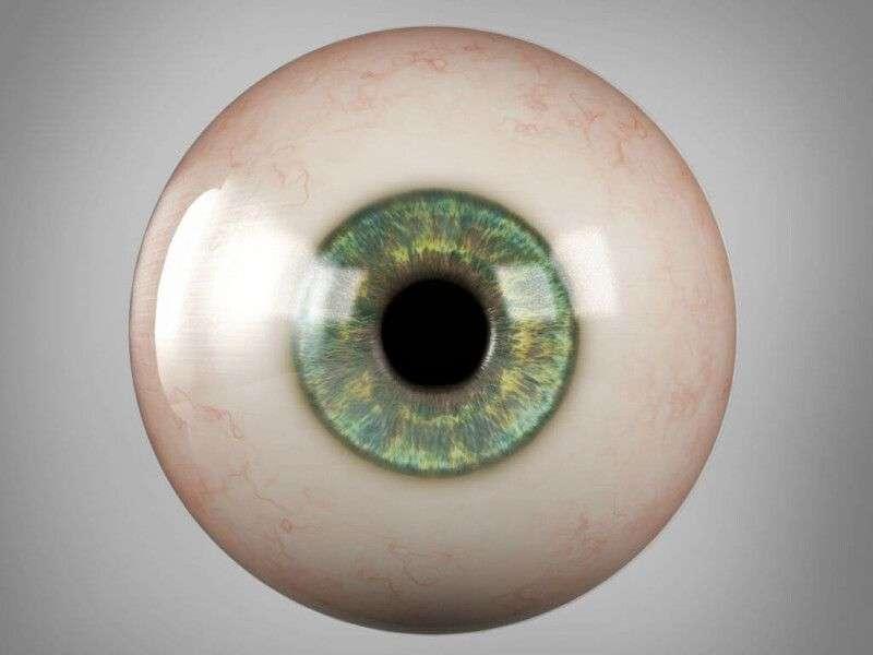 Funcionamiento de la retina